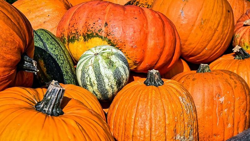 Vigyázzon a Halloween-tökökkel! - Figyelmeztetés érkezett