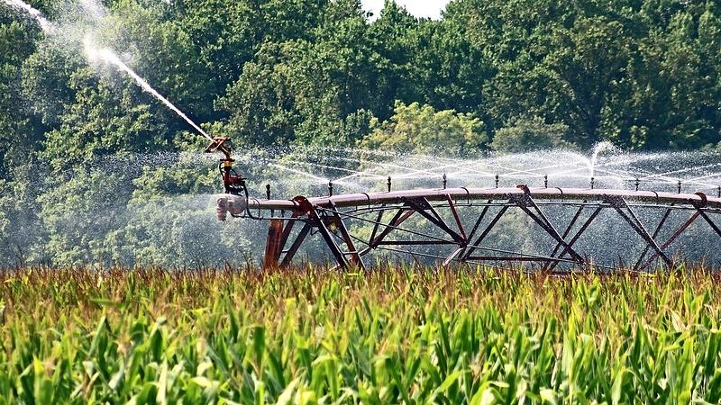 Koronavírus: könnyítést kaptak a gazdák