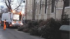 FKF: így kellene kidobni a karácsonyfákat!