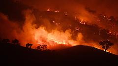 Újabb halálos áldozata van a tomboló ausztrál tűzvésznek