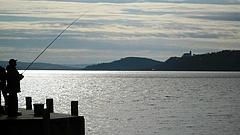 Baj van a Balatonnál - veszélyben a tó vízminősége