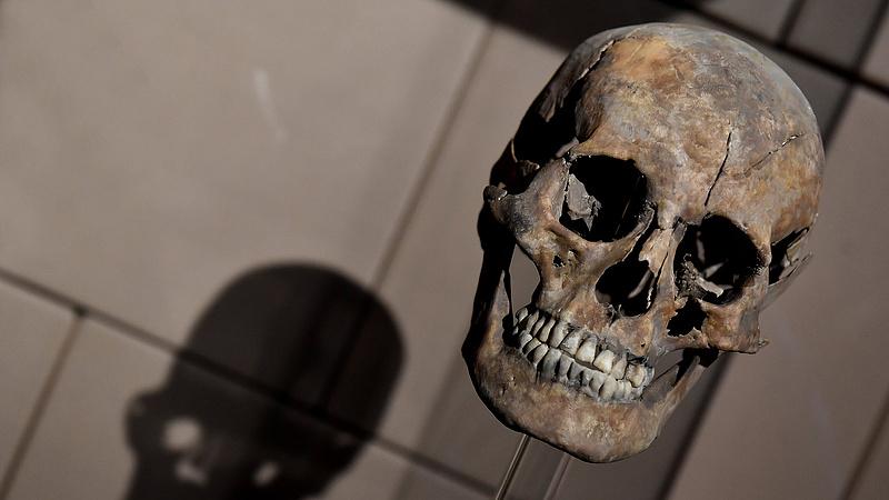 Csúnyán visszaesett a múzeumok látogatottsága