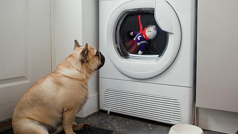 Melyik a legjobb Magyarországon kapható mosógép? - Megjött a válasz