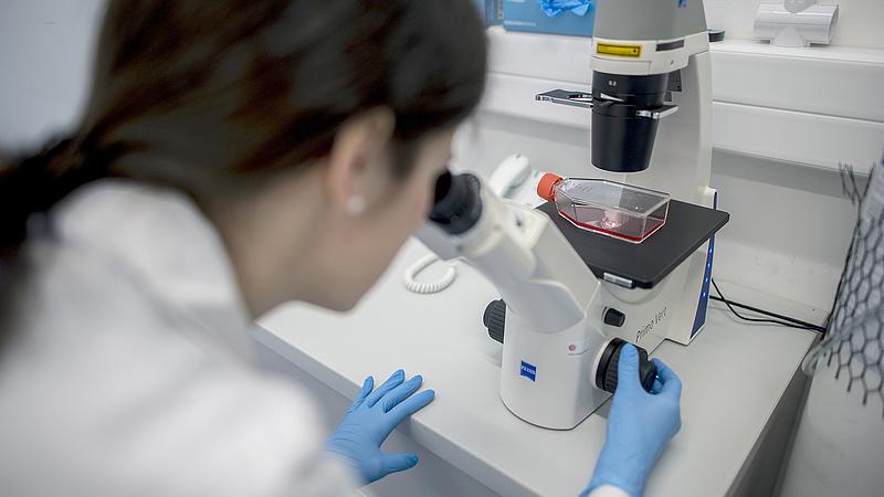 Koronavírus: így kellene felkészülni a védekezésre a virológus szerint