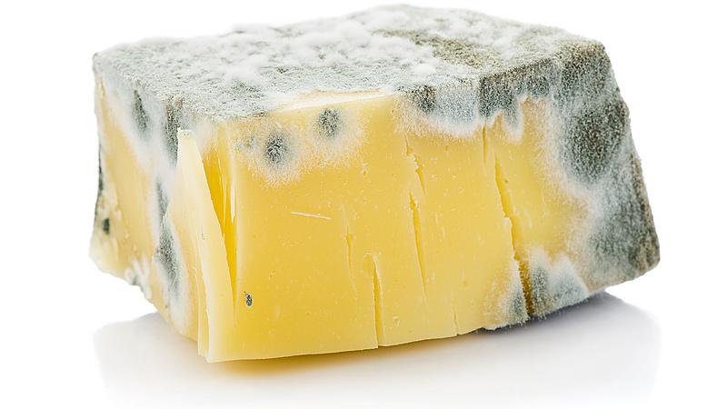 Meg lehet enni a lejárt szavatosságú sajtot? A Nébih elárulja