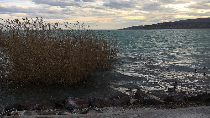 Koronavírus: nő a feszültség a Balatonnál