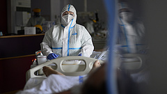 Újabb 11 áldozata van itthon a koronavírus-járványnak