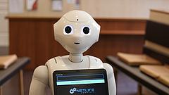 Annyira elegük van az embereknek, hogy inkább robotokat szeretnének a parlamentbe