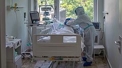 Már 383 életet követelt a járvány Magyarországon