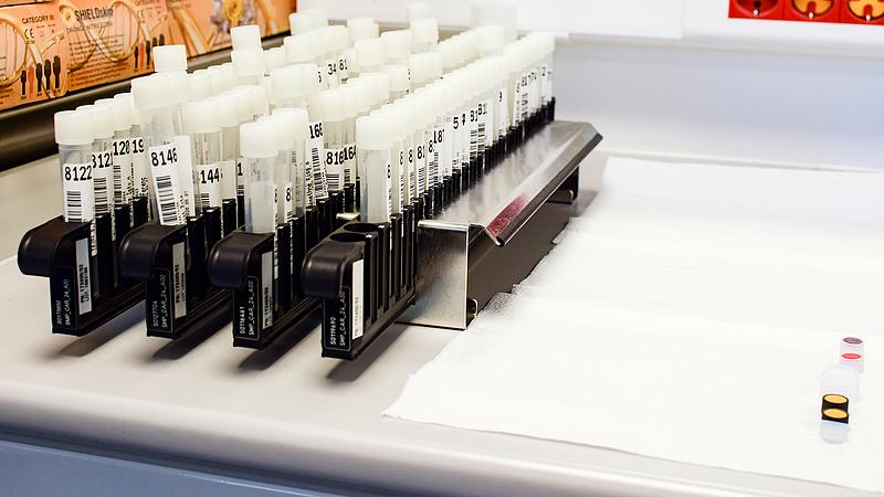 Ha a munkáltató PCR-tesztet kér a külföldi nyaralás után, neki kell fizetnie az árát