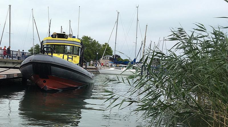 Idegenhonos hal a Balatonban - a horgászok segítségét kérik