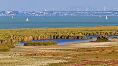 Feldúlták a Fertő-tavat, a helyiek szenvednek
