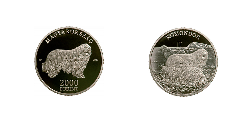 Hivatalosan is megjelent a komondoros forintérme