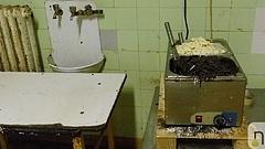 Elborzasztó körülményeket találtak egy sütőipari üzemben