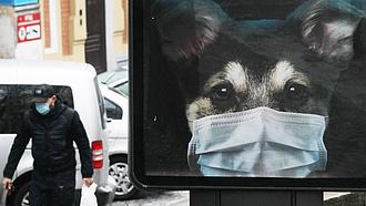 Koronavírus: Ukrajnában 40 ezer halálos áldozatot követelt a járvány