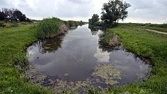 Nyomoznak Tokajnál természetkárosítás miatt