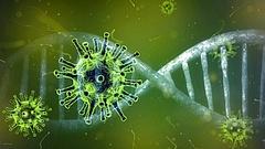 Virológus: a vírus megtalálja a beoltatlanokat