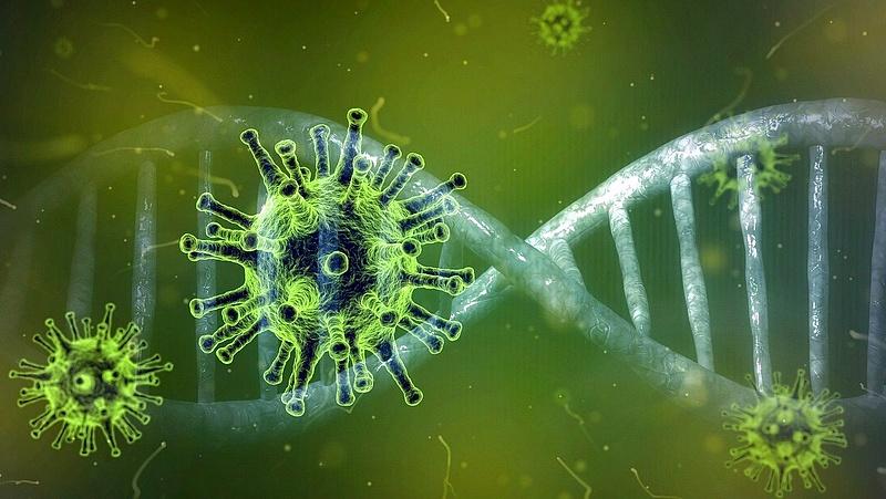 A koronavírus áldozatainak száma átlépte a 2,6 milliót