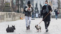 Katasztrofális a helyzet a cseheknél, győzelemre áll az angol vírusmutáns