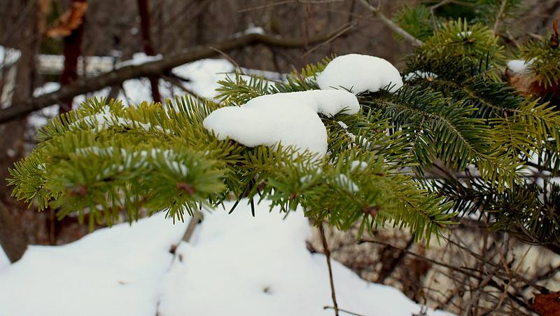 Leeshet az idei első hó Szlovákiában