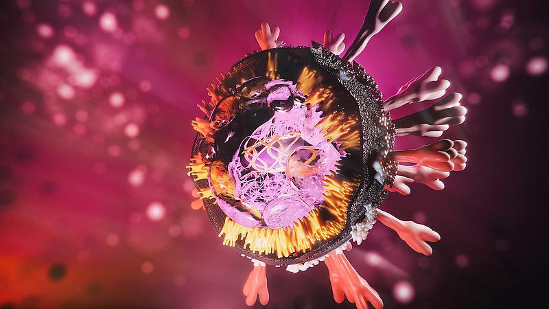 Koronavírus: Lengyelország ismét szigorít az új variáns miatt