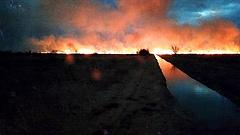 Húsz hektáron ég a nádas a Balatonnál (frissítés)