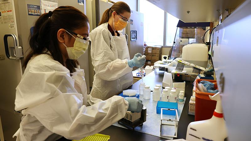 Finisben a Novavax koronavírus-vakcinája, ami évtizedekre védettséget adhat