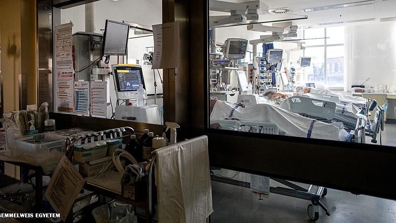 Friss adatok érkeztek a magyar kórházakból