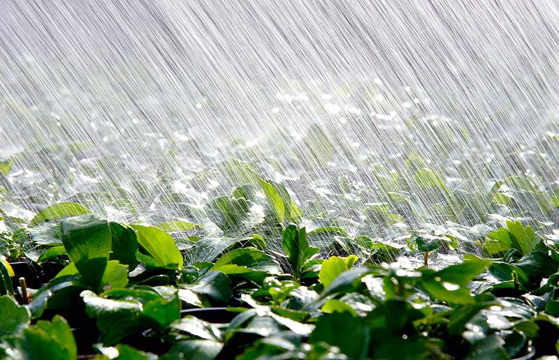Komoly esőzés várható csütörtökön
