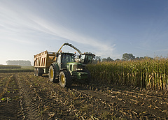 Megindultak a békési traktorok