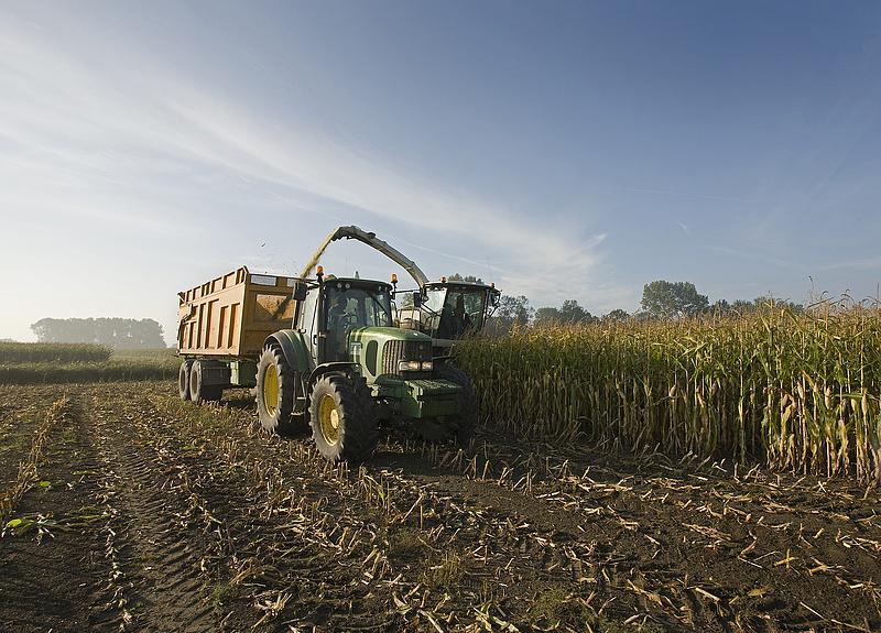A KPMG ellenőrizheti az uniós agrárkifizetéseket