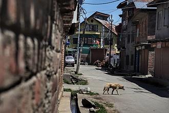 Az EU betiltaná az Indiából való beutazást
