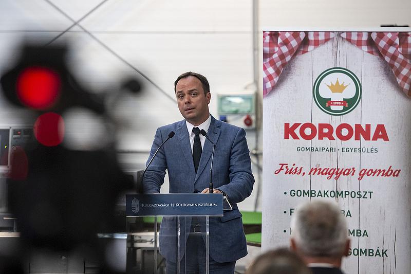 A miniszterelnököt segíti, nem indul a választáson az ismert fideszes politikus