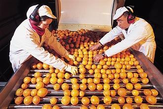 Az élelmiszeripar legnagyobb trükkje, ami a narancslével történik
