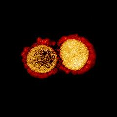 Koronavírus: jó hír érkezett a szomszédból