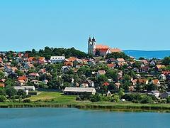 Fonalas kékalga jelent meg a Balatonban