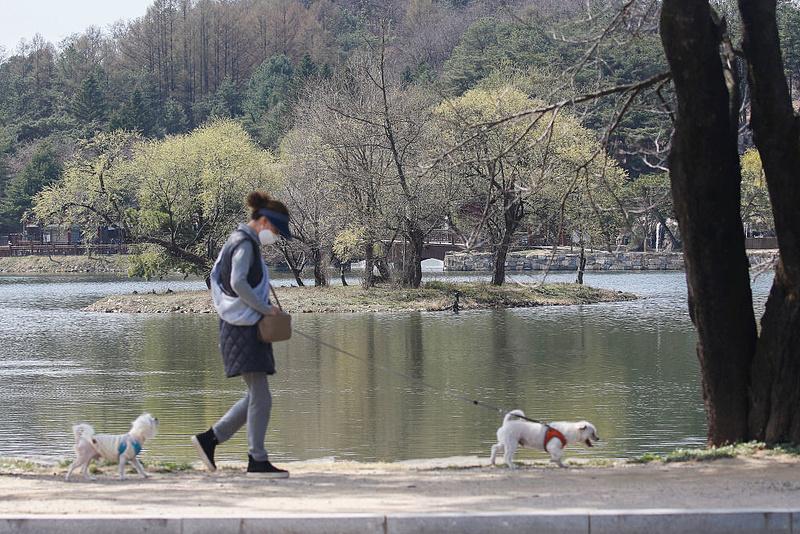 Dél-Koreában belobbant a járvány, minden eddiginél nagyobb szigor jön