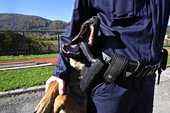 Hamis bort, hígított mézet és lóhúst foglaltak le az európai rendőrségi razziasorozatban