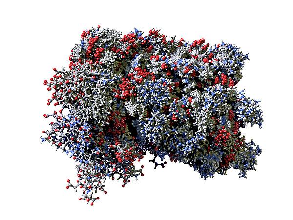 Minden ismert proteint kilőnek a felhőbe