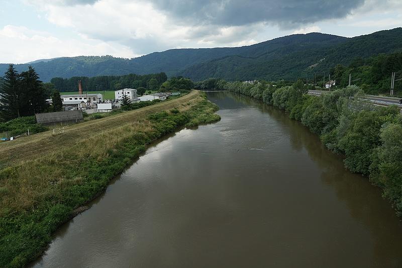 Ökológiai katasztrófa történt a Duna mellékfolyóján, tonnányi hal pusztult el