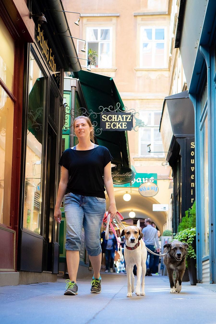 Kutyával a városban/TQW_Houdek