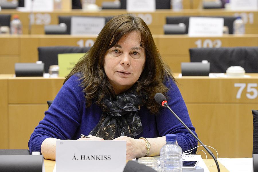 Az Európai Parlament által 2013. április 9-én közreadott képen Hankiss Ágnes Fidesz-KDNP-s EP-képviselő Forrás: MTI/Európai Parlament/Benoit Bourgeois