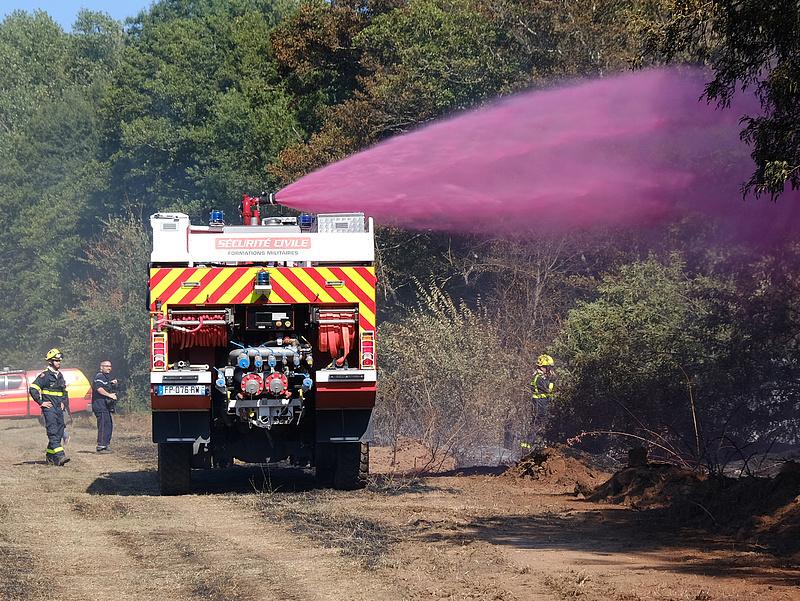Francia borászok felmérik, mekkora kárt tett a szőlőkben a Riviéra melletti tűzvész