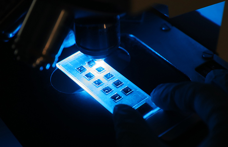 A duplaoltásnál is jobban véd, ha a fertőzésre oltanak egy kutatás szerint