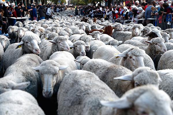 Madrid utcáin is tömeges vonulás volt a hétvégén
