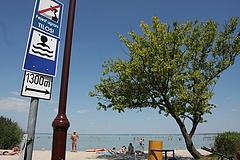 Közösen mentenék a Balaton vízét