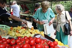 Nyugdíjasok, figyelem: nagy ötlettel állt elő Parragh László