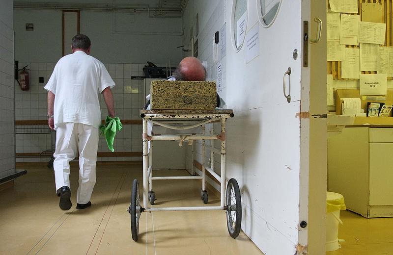 Rég nem látott járvány tört ki Magyarországon