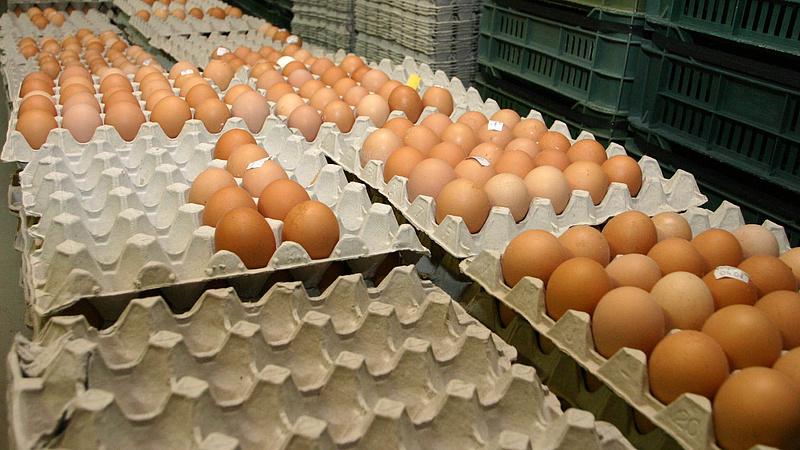 Nagyon nagy a baj a magyar tojással