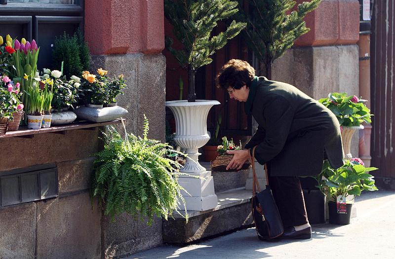 A virágüzletek utolsó kenetét adta fel a kormány a korlátozásokkal